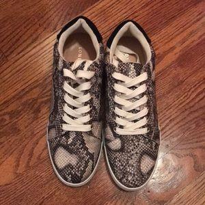 Never Worn Snakeskin Tennis Shoes